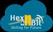 Hex N Bit